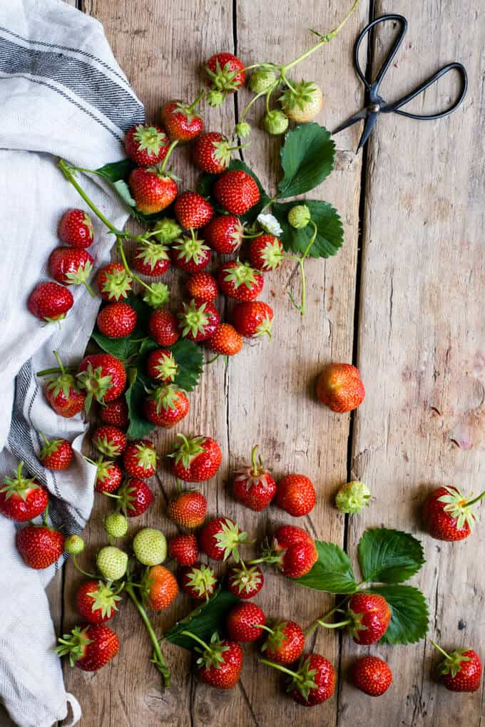 Juicy summer strawberries for fruit cake | via @annabanana.co