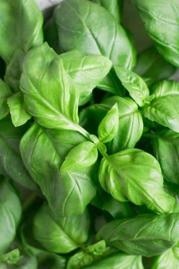 Easy, 5-minute vegan pesto recipe! Perfect for any pasta dishes! #vegan #veganpesto #healthyrecipe | via @annabanana.co