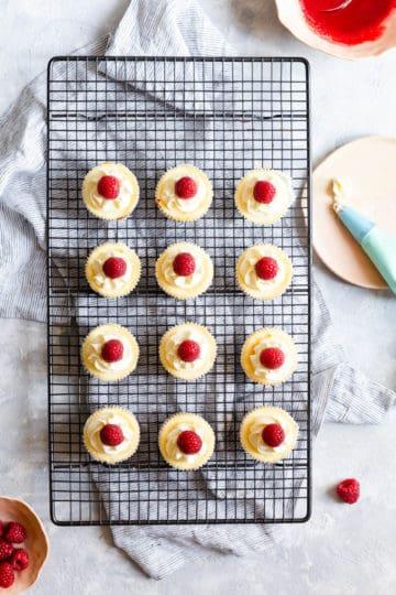 overhead shot of 12 individual cheesecake bites topped with fresh raspberries