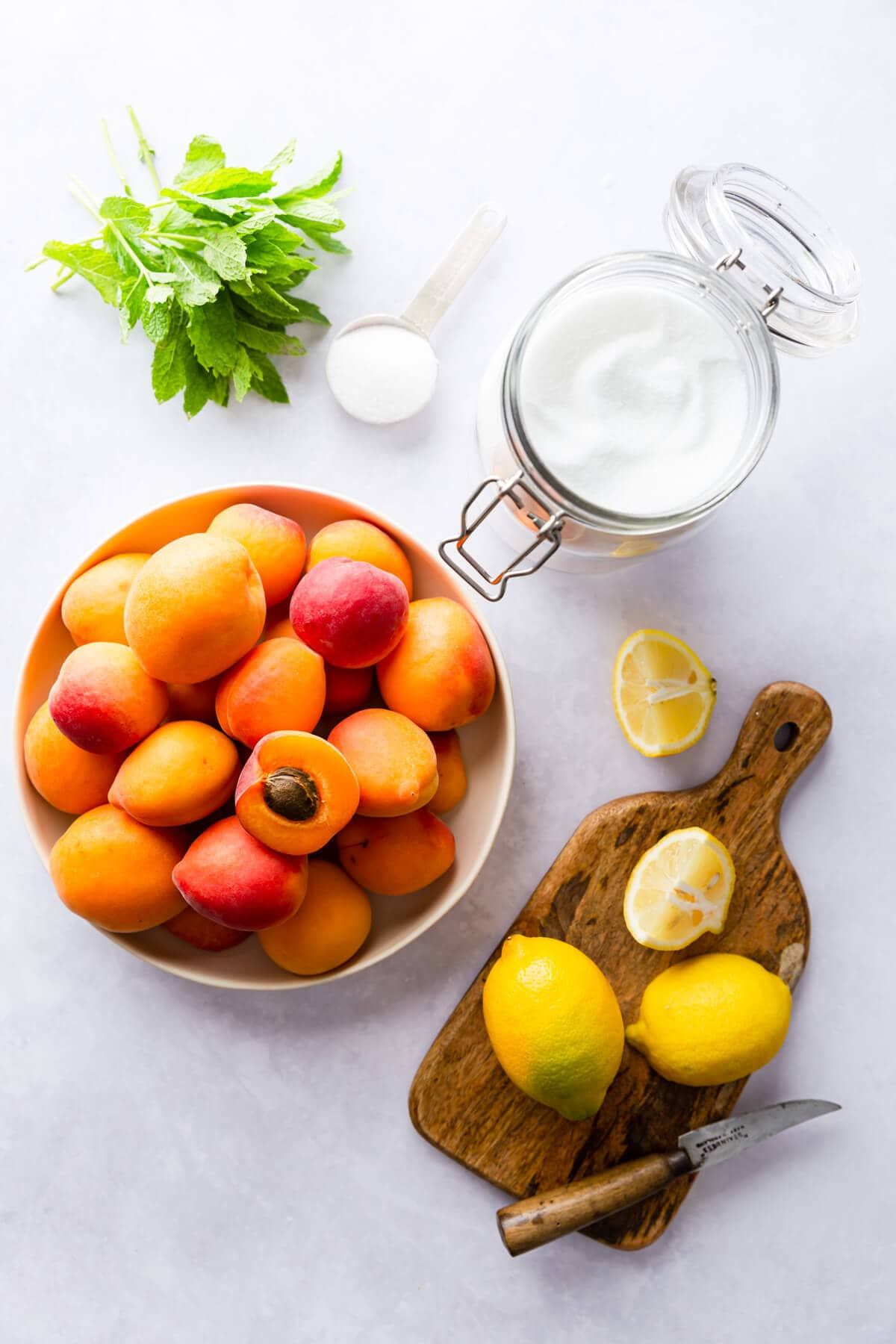 overhead view of ingredients for homemade apricot nectar
